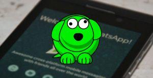 whatsapp-kullanıcı-nasıl-takip-edilir?
