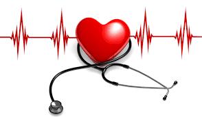 Arter – Atardamar Tıkanıklığını Önleyen Besinler Nelerdir