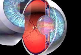 katarakt-neden-olusur
