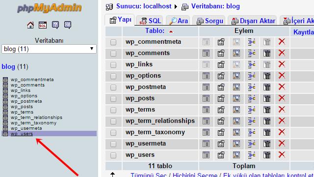 unutulan-wordpress-sifresi-nasil-kurtarilir-2