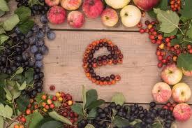e-vitamini-hangi-gidalarda-bulunur-ve-eksikligi-nasil-anlasilir-1