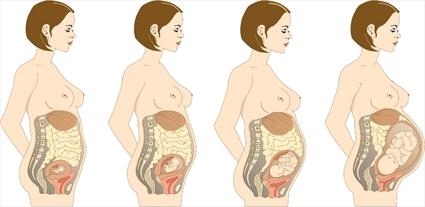 hamileligin-ondorduncu-haftasinda-yasanacak-degisimler-nelerdir-5